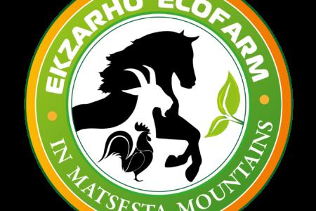 Ekzerho_Logo-04-2